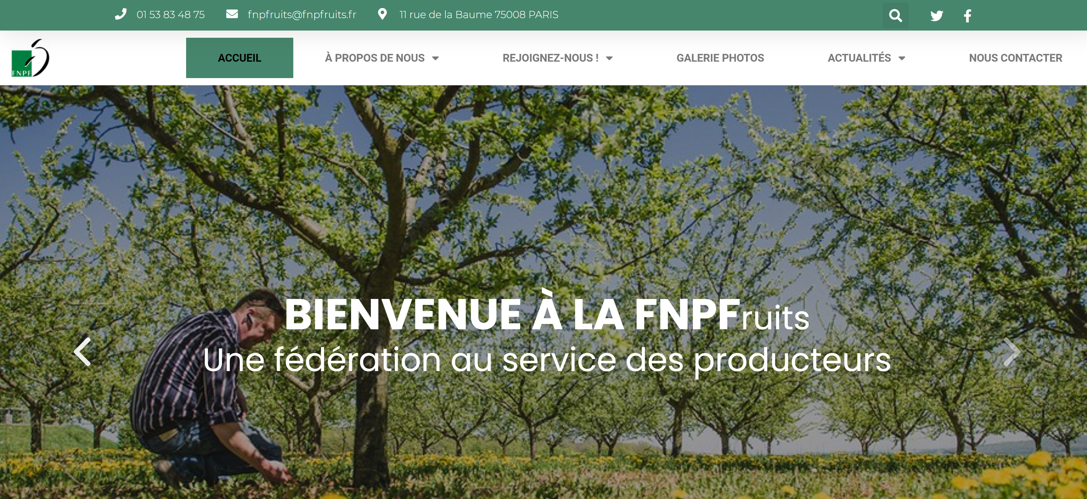 Site FNPF Accueil - Mathis BEHAEGEL